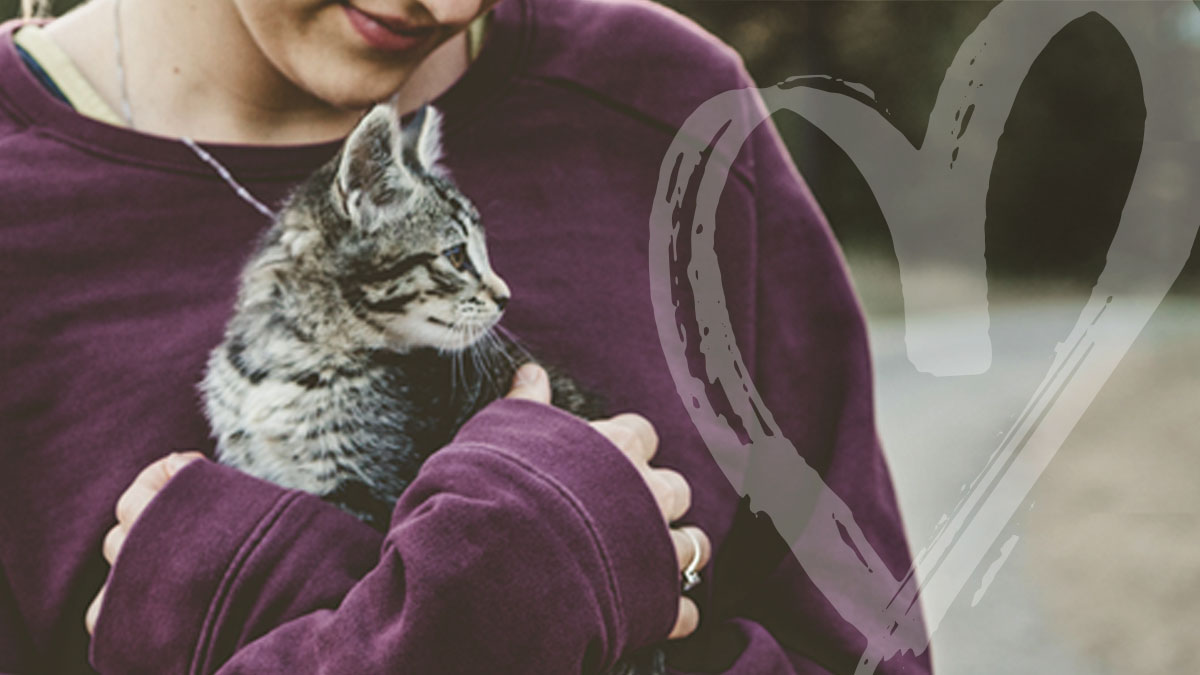 A blonde woman wearing a purple sweatshirt holds a cat