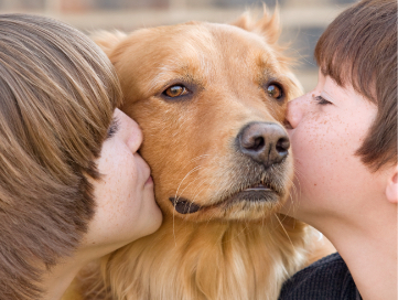 Two little boys sitting on opposite sides of their adopted dog kissing the dogs check.