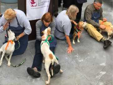Four adult volunteers with dogs on leashes at an adoption event.