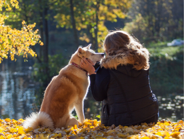 Picture of a woman caressing her dogs face sitting at the side of a lake with yellow leaves on the ground.