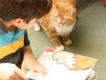 Little boy reading a book on the floor next to his cat.