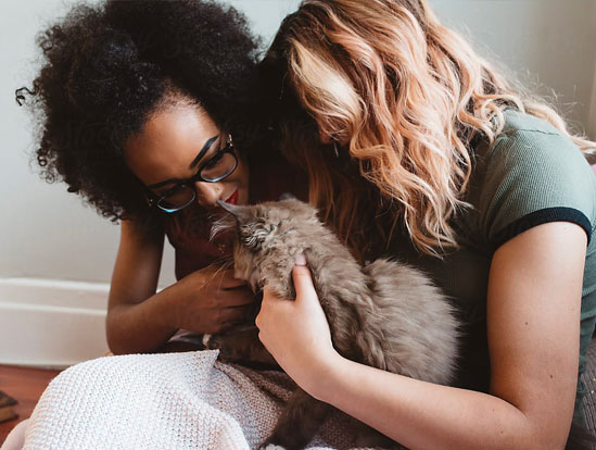 Two women embrace as they hold a grey cat