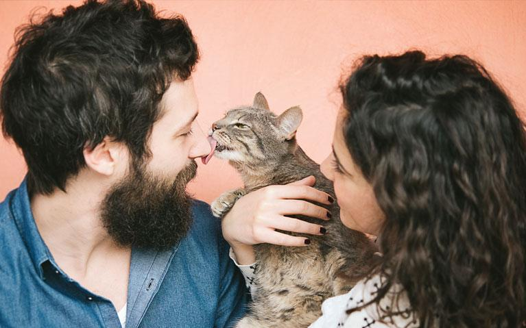 White man with brown hair and big bushy brown beard is being licked by a grey and brown cat who is being held by a white woman with brown curly hair