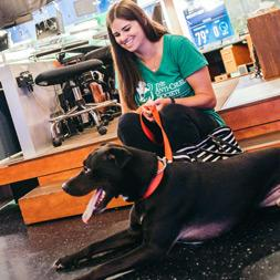 A dark haired woman in a green t-shirts sits with a black dog in a TV studio