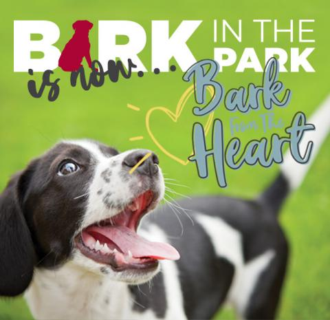 dog with heart and text bark in the park is now bark from the heart