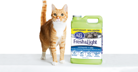 On orange tabby cat stand next to a jug of Cat's Pride