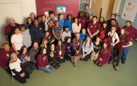 A large group of diverse staff from The Anti-Cruelty Society pose for a photo in the adoption lobby