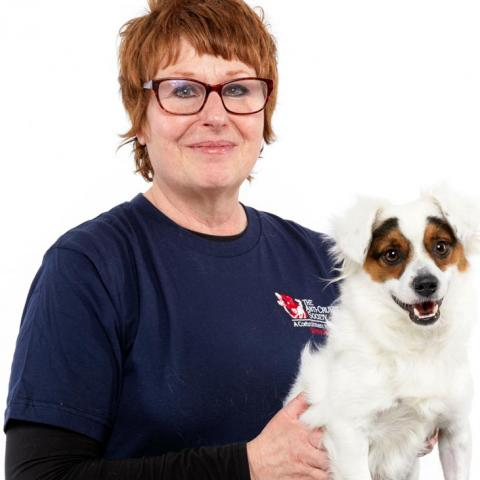 Woman in blue shirt with red glasses and red hair holding white dog with brown patches on his eyes