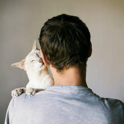 White cat snuggling up on the shoulder of a white man with dark hair
