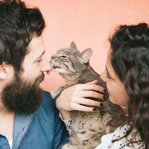 White man with brown hair and big brown beard is being licked by a brown and tan cat which is being held by a white woman with brown hair